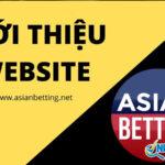 Asian betting là trang xếp hạng nhà cái tốt nhất