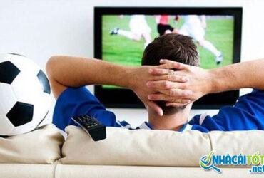 Có phải chúng ta rất dễ thua cá độ bóng đá?